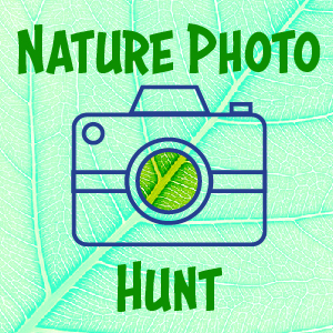nature photo hunt