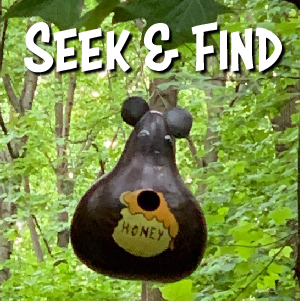 Seek and Find